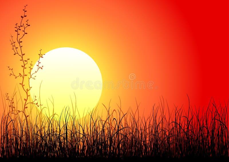 Por do sol mágico ilustração royalty free