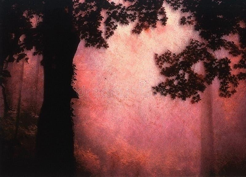 Por do sol místico da floresta ilustração royalty free