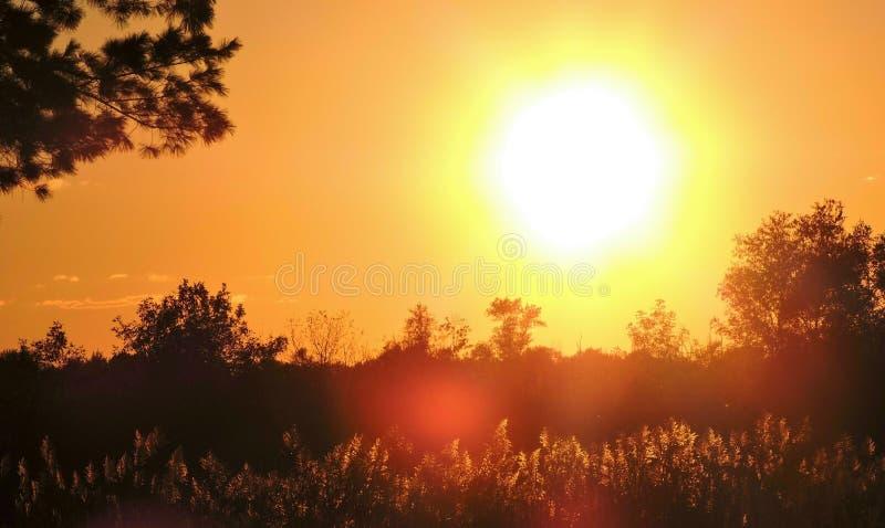 Por do sol morno da queda do fulgor dourado foto de stock