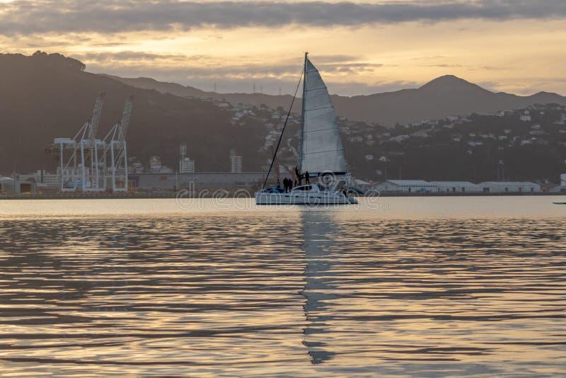 Por do sol morno, esporte de barco com reflexões no oceano, Nova Zelândia imagens de stock royalty free
