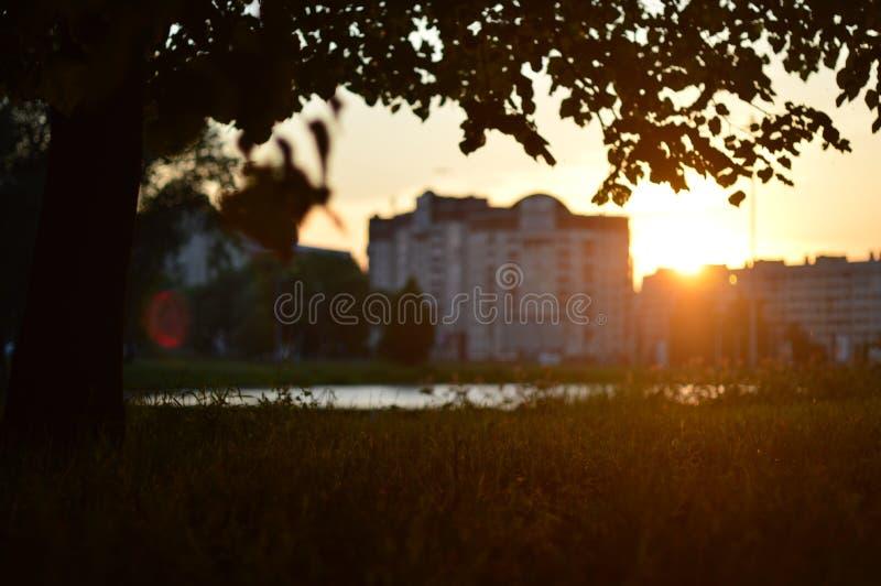 Por do sol na cidade pelo lago fotos de stock