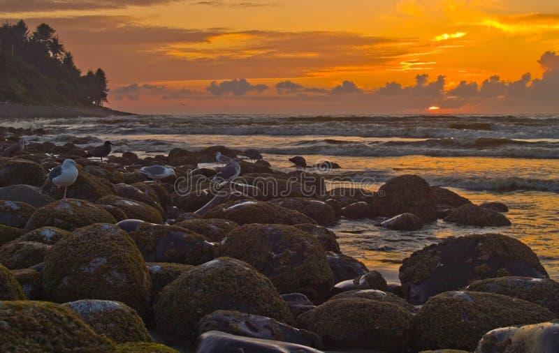Por do sol na costa 2 de Oregon imagem de stock royalty free
