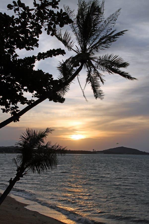 Por do sol na ilha tropical imagem de stock