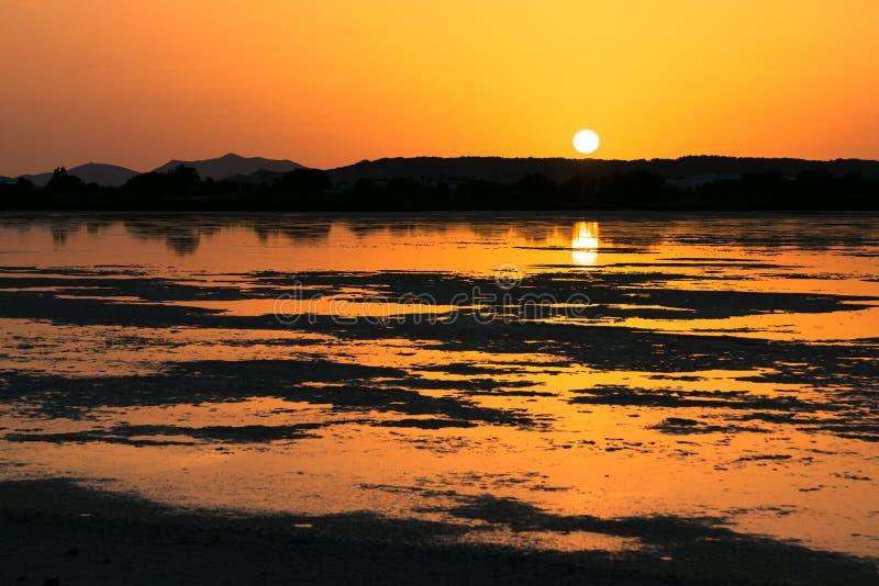 Por do sol na lagoa de flamingos cor-de-rosa em Chia, Sardinia fotos de stock royalty free