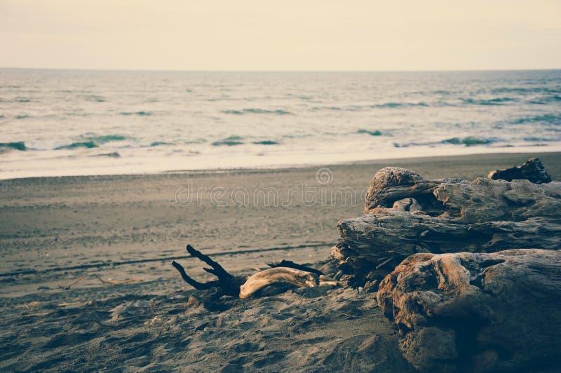 Por do sol na praia da areia do preto de Hokitika com log de madeira inoperante com efeitos da cor do vintage fotografia de stock royalty free