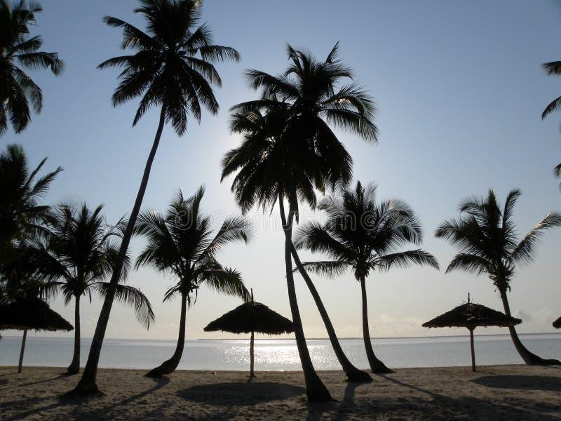 Por do sol na praia de Zanzibar foto de stock royalty free