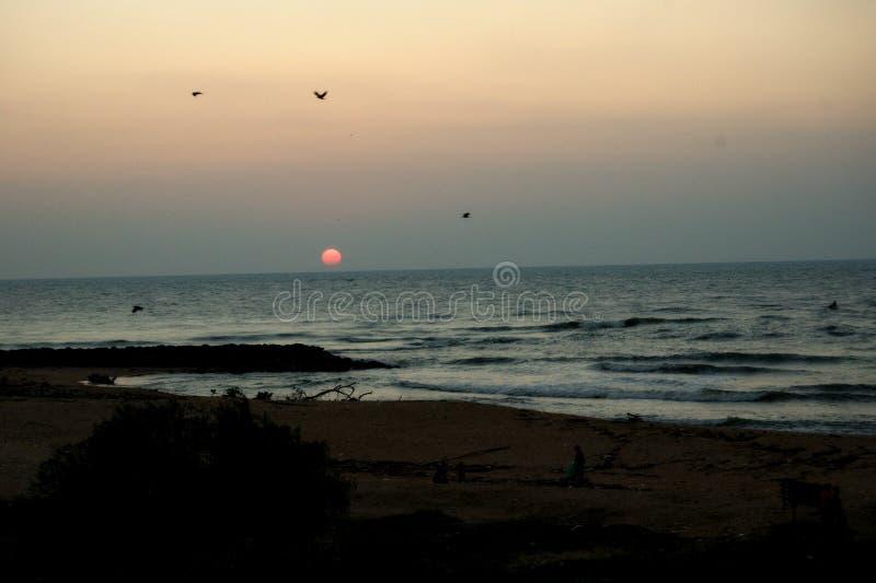 Por do sol na praia em Sri Lanka fotos de stock royalty free