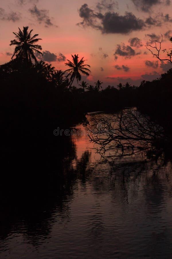 Por do sol na silhueta do rio das árvores e da reflexão da palma fotografia de stock