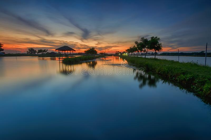 Por do sol, nascer do sol, Tanjung Burung, Tangerang, ponte de bambu, árvore, paisagem, natureza, cabana fotos de stock royalty free