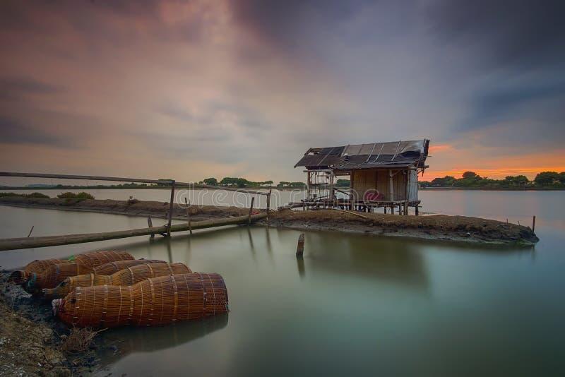 Por do sol, nascer do sol, Tanjung Kait, Tangerang, árvore, paisagem, natureza fotografia de stock royalty free