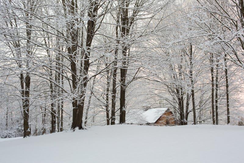 Por do sol nevado de Nova Inglaterra fotografia de stock