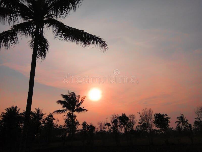 Por do sol no céu vermelho fotos de stock royalty free