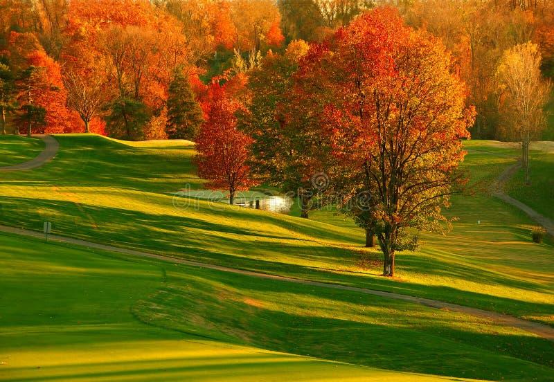 Por do sol no campo de golfe 2 fotografia de stock royalty free