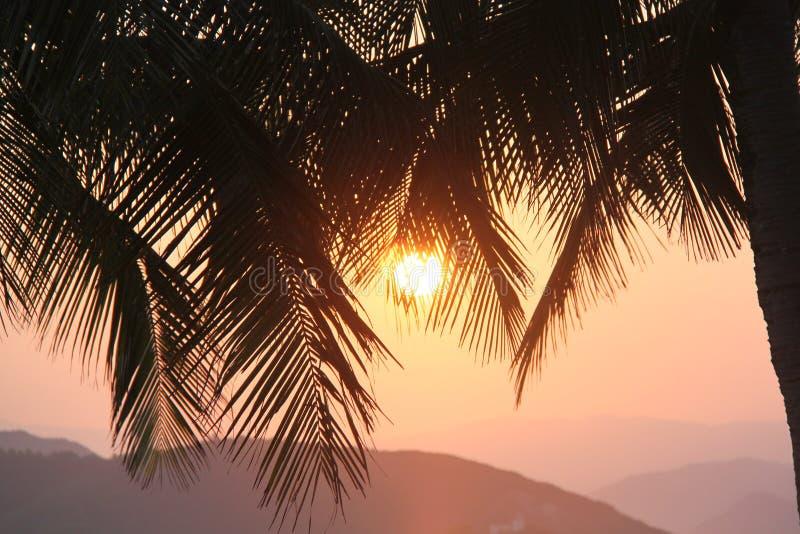 Por do sol no equador fotos de stock