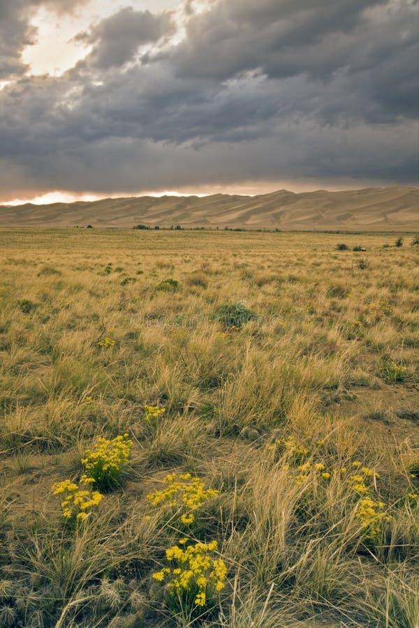 Por do sol no grande monumento nacional de dunas de areia fotografia de stock