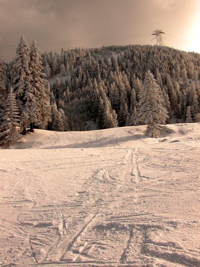 Por do sol no inverno imagens de stock royalty free