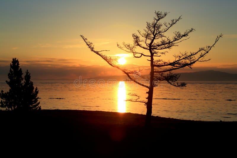 Por do sol no inverno Baikal foto de stock