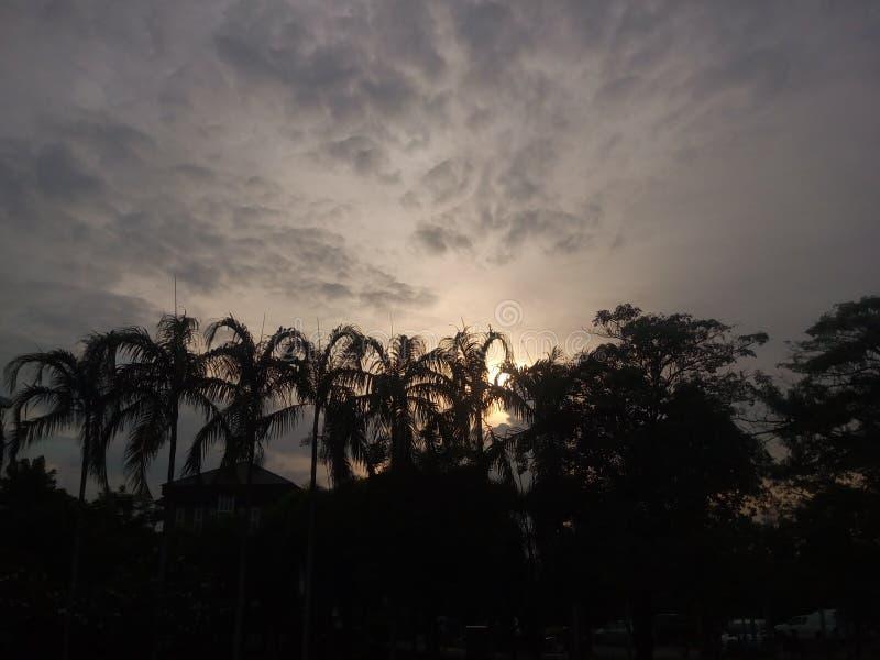 Por do sol no jardim Opinião da largura fotografia de stock royalty free