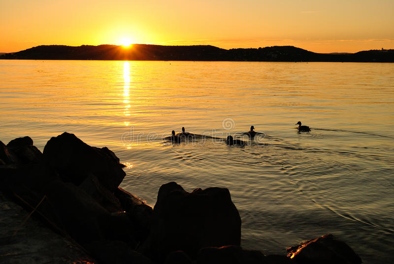 Por do sol no lago Balaton fotos de stock