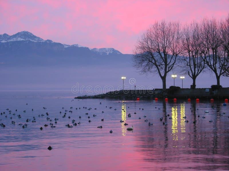 Por do sol no lago Genebra 2 foto de stock