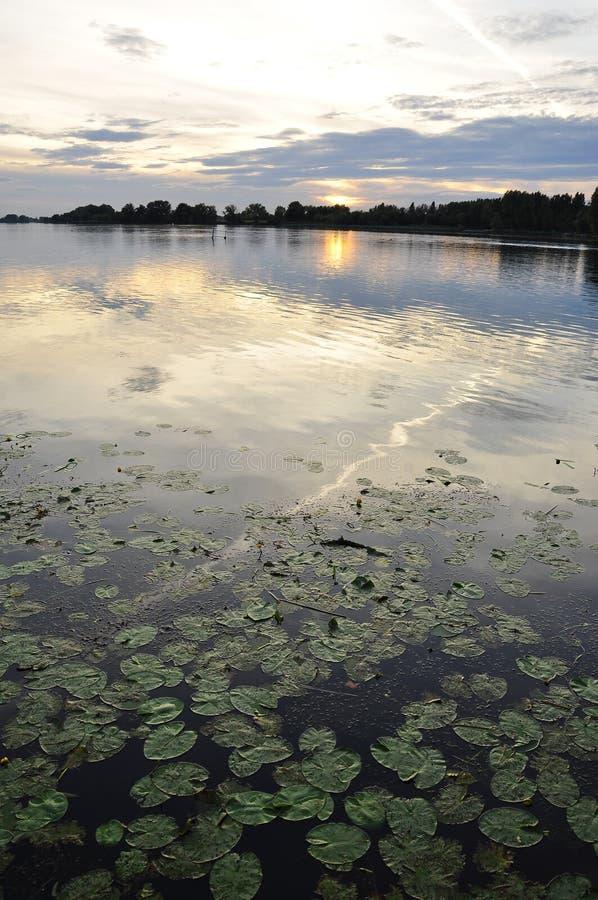 Por do sol no lago mantova (Mantua), Itália imagens de stock