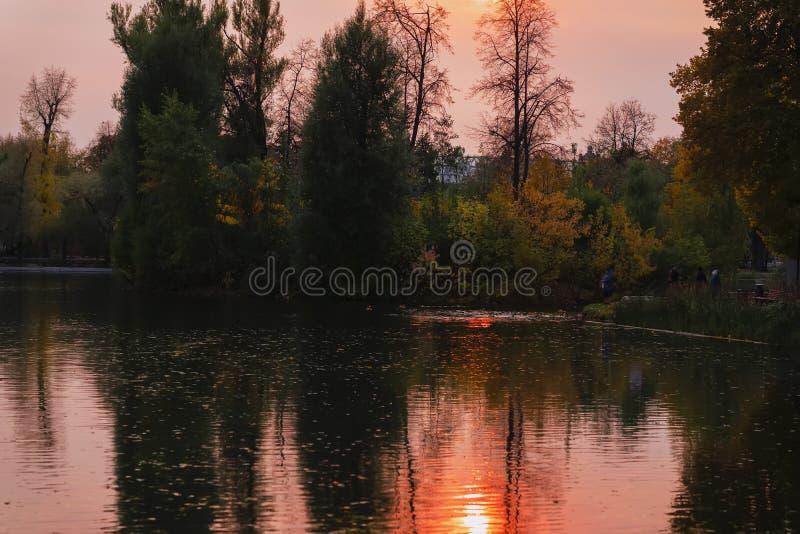 Por do sol no lago, paisagem do outono, folha amarela das árvores, noite atrasada fotos de stock