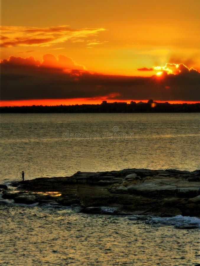 Por do sol no louro Sydney da Botânica fotografia de stock royalty free