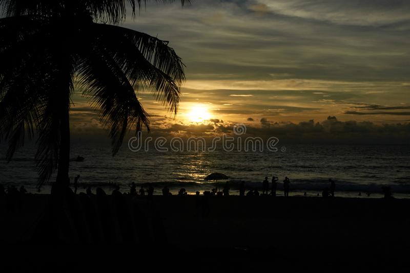Por do sol no mar T grande da palma Seascape fotografia de stock royalty free
