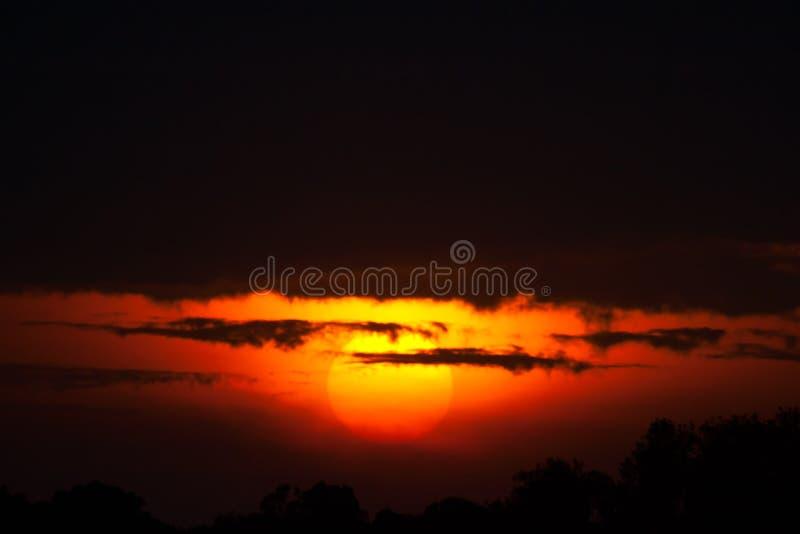 Por do sol no Masai Mara fotos de stock royalty free