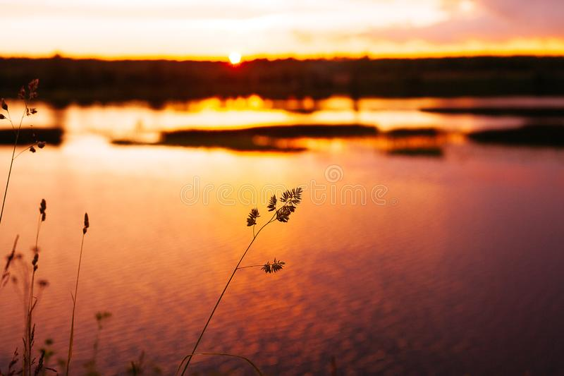 Por do sol no rio fotografia de stock royalty free