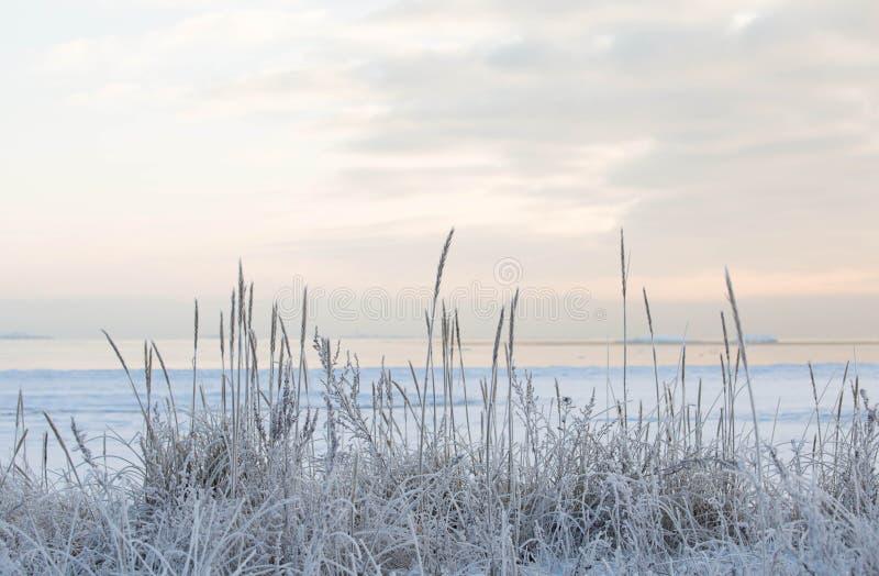 Por do sol pela praia, mar gelado do inverno imagem de stock
