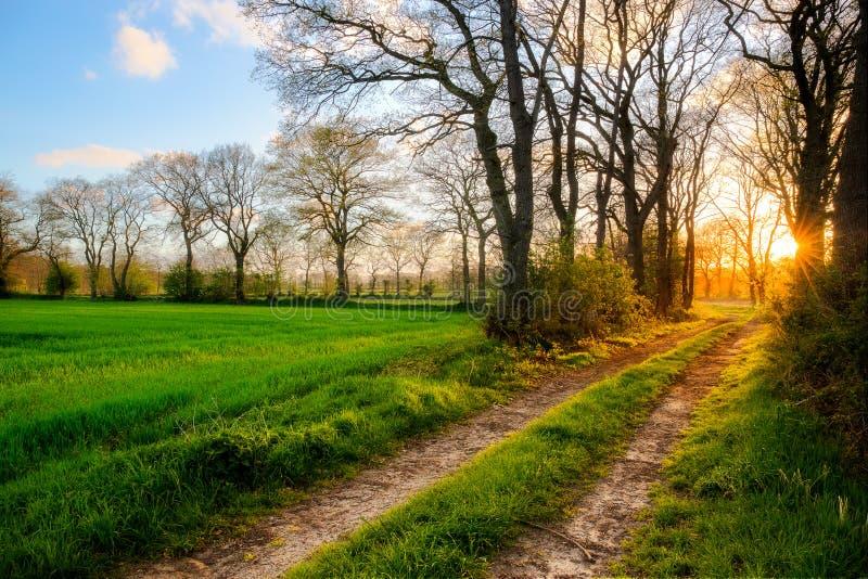 Por do sol perto de Ockenhausen fotos de stock royalty free