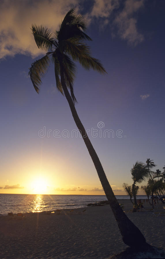 Por do sol - praia de Bayahibe - República Dominicana imagem de stock royalty free