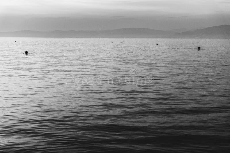 Por do sol preto e branco do mar imagens de stock