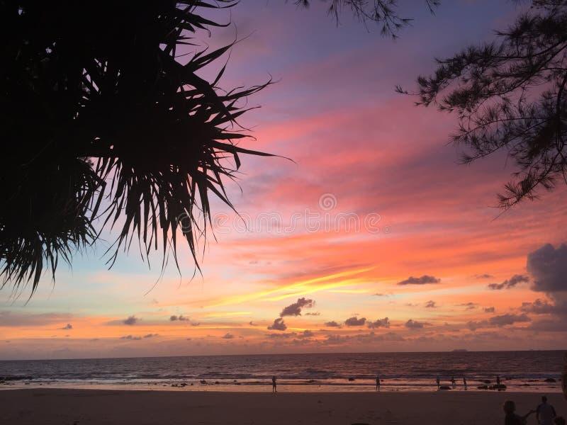 Por do sol quadro por palmeiras sihouetted fotos de stock royalty free