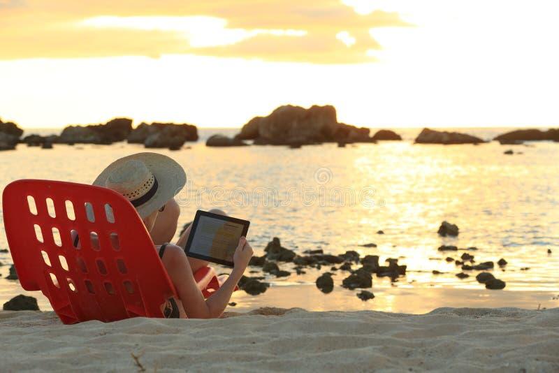 Por do sol que websurfing imagem de stock royalty free