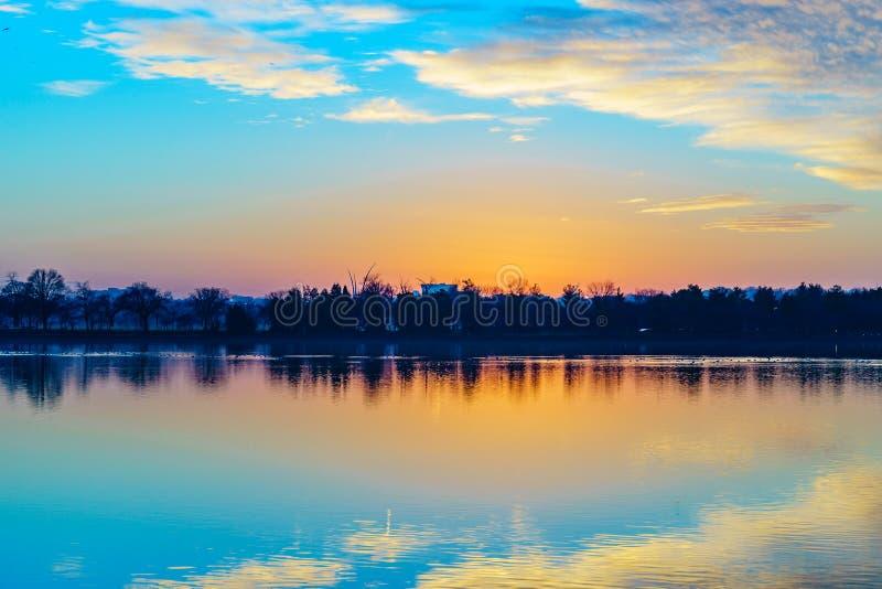 Por do sol do Rio Potomac, EUA do Washington DC e árvores foto de stock royalty free