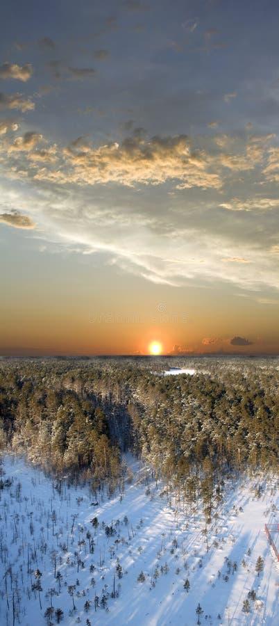 Por do sol selvagem fotografia de stock