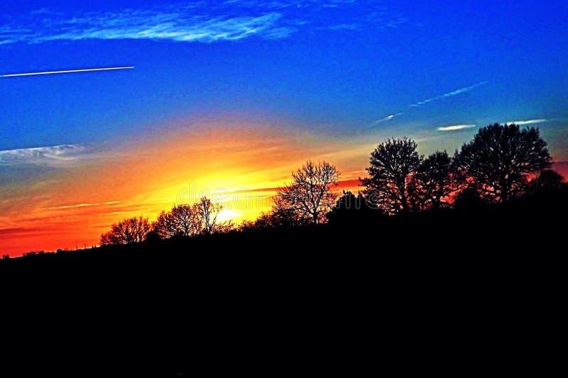 Por do sol sobre árvores imagem de stock royalty free