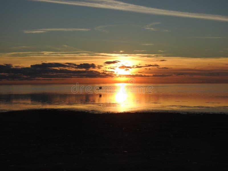 Por do sol sobre a baía de Laguna Madre, ilha sul do capelão, Texas imagens de stock