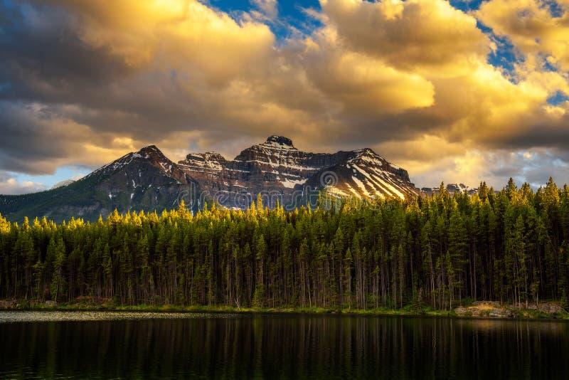 Por do sol sobre a floresta profunda ao longo de Herbert Lake no parque nacional de Banff, Canadá foto de stock royalty free