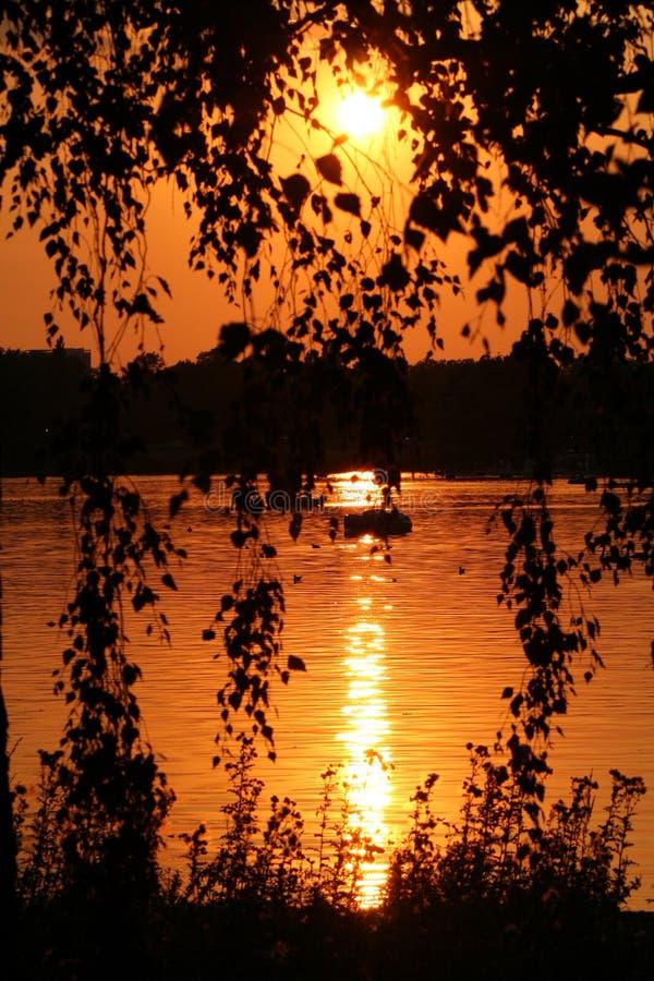 Por do sol sobre Hyde Park, Londres imagem de stock