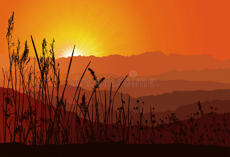 por do sol sobre montanhas com silhueta da grama ilustração do vetor