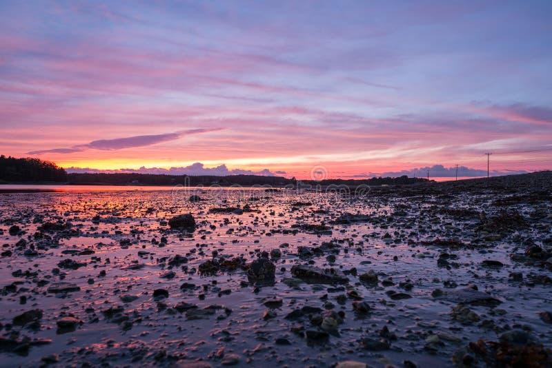 Por do sol sobre mudflats em Maine fotografia de stock royalty free