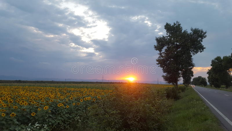 Por do sol sobre o campo fotos de stock royalty free