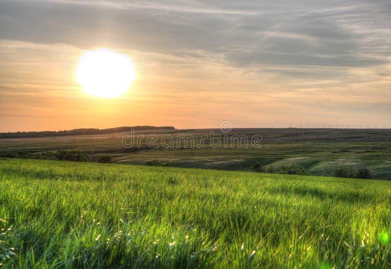Por do sol sobre o campo de grama verde imagem de stock