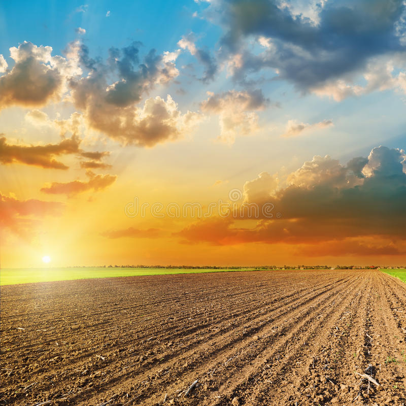 Por do sol sobre o campo preto agrícola na mola foto de stock