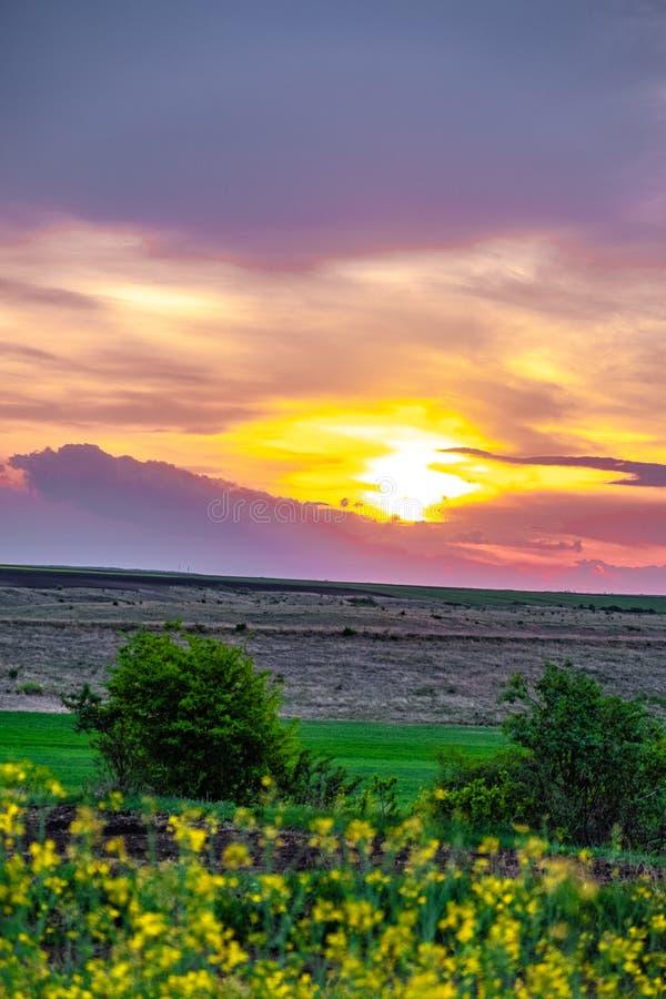 Por do sol sobre o campo do rapeseed fotografia de stock royalty free