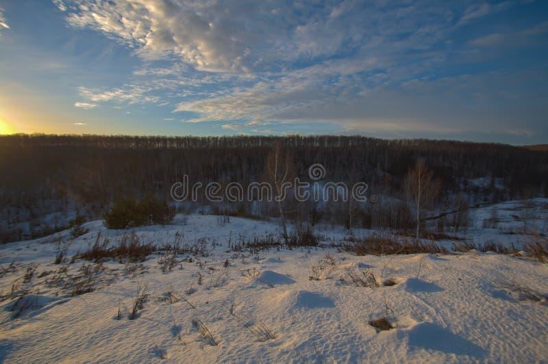 Por do sol sobre o distrito de Przemysl da floresta Região de Kaluga fotografia de stock royalty free