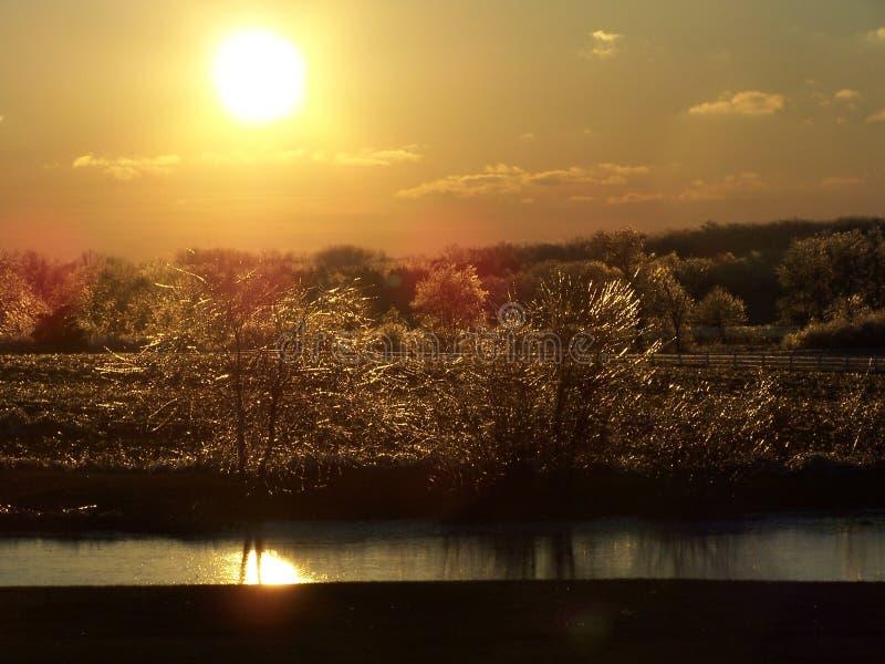 Por do sol sobre o gelo, as árvores, e a lagoa. fotos de stock